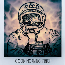 Good Morning Finch