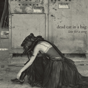 dead-cat-in-a-bag-musica-late-for-a-song