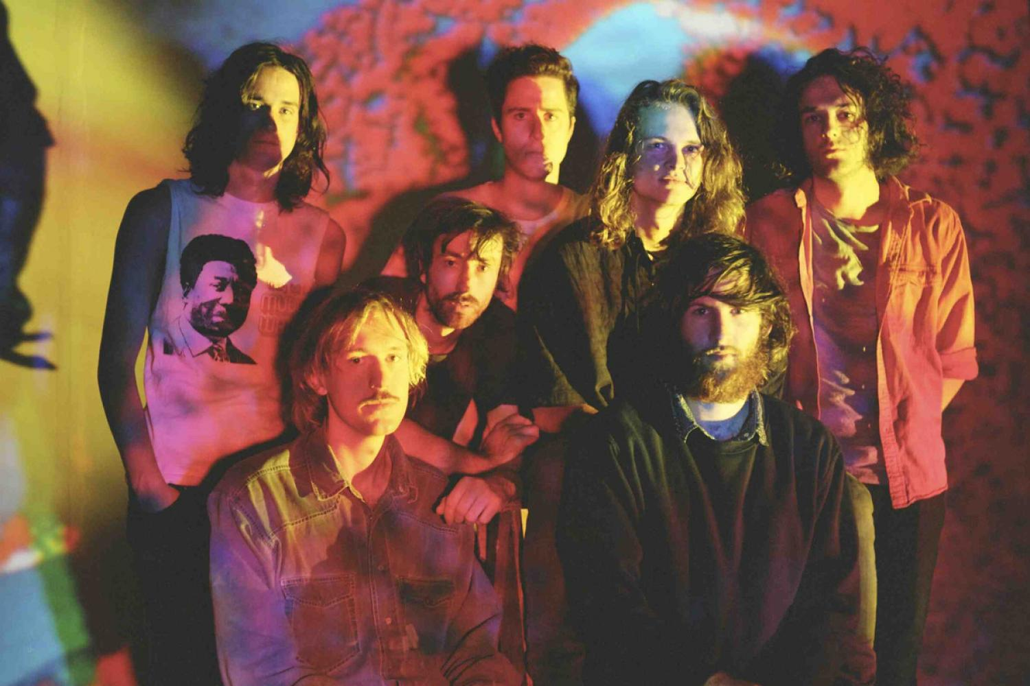 king-gizzard-1200x800